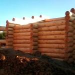 Сруб дома из бревна(5)